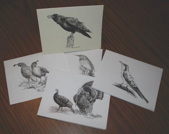 Birds of the Southwest
